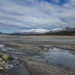 Riverbed in Denali National Park, Alaska